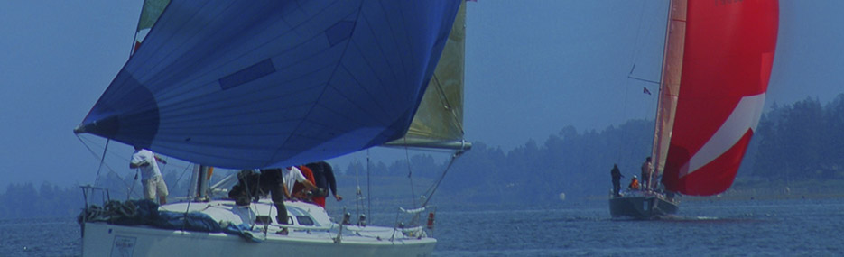 sailing in the Comox Harbour
